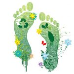 The Green Footprint at Grano de Oro