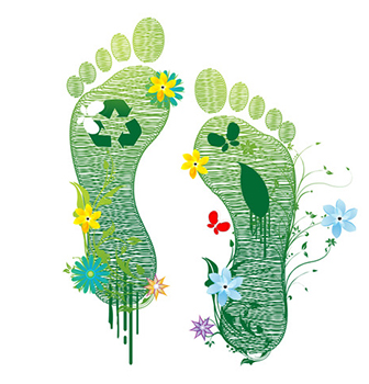 The Green Footprint at Grano de Oro